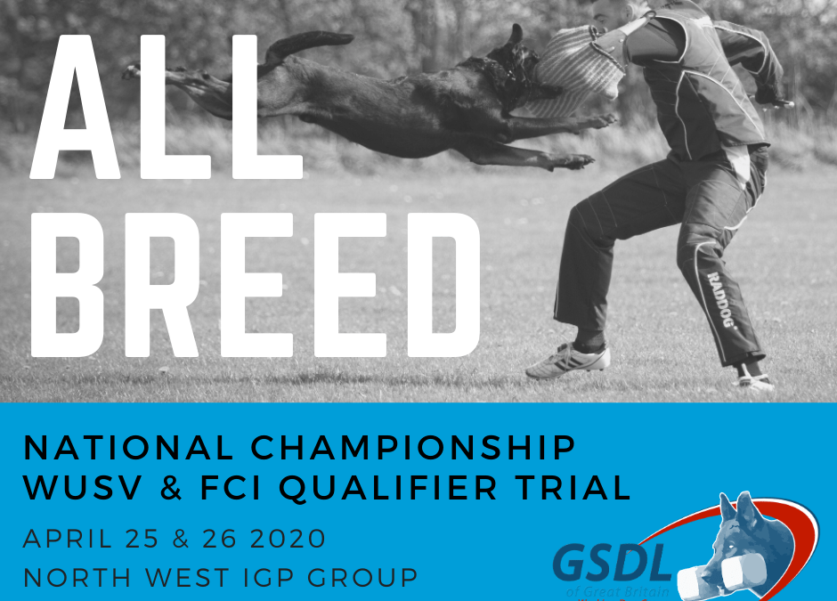 GSDL WDG All Breed National Championship and FCI Qualifier Trial